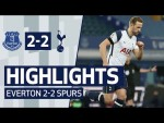 Two unstoppable Harry Kane volleys at Goodison Park! EVERTON 2-2 SPURS   HIGHLIGHTS   Premier League
